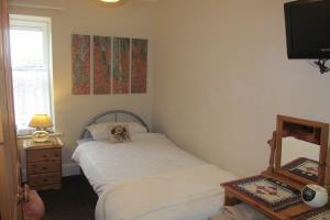 Room 6 Single Room