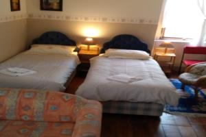 Large Twin plus Sofa Bed